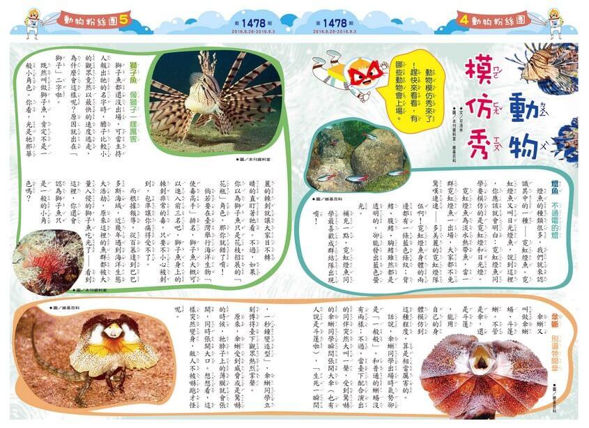 動物模仿秀 燈魚傘蜥獅子魚