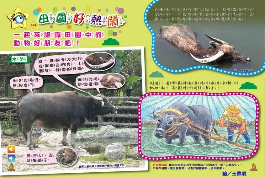 我認識‧可愛的動物-田園好朋友-水牛、白腹秧雞、紅冠水雞、臺灣野豬、枯葉蝶、樺斑蝶