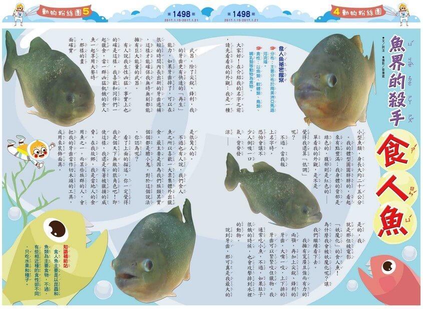 魚界的殺手 食人魚
