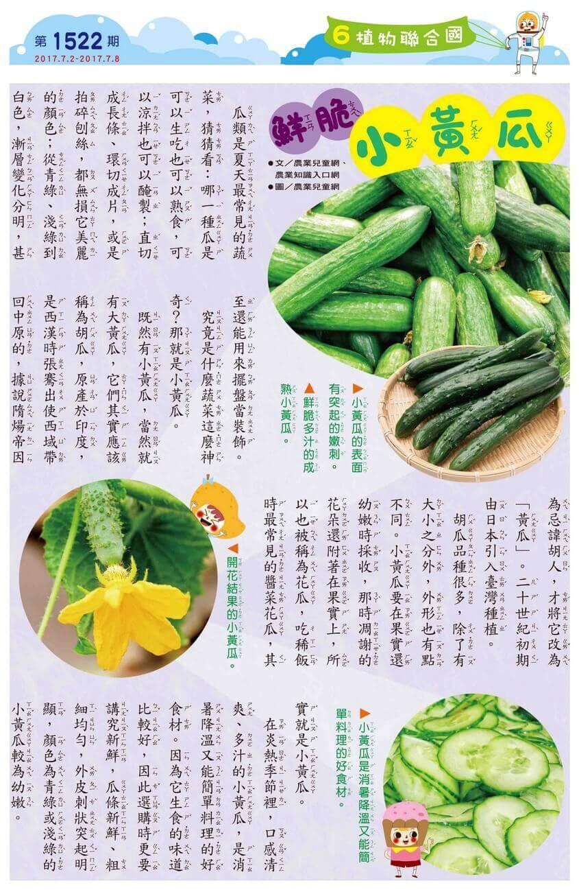 6 植物聯合國 鮮脆小黃瓜 全國兒童週刊1522期出刊囉!