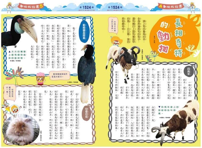 4-5 動物粉絲團 長相奇特的動物