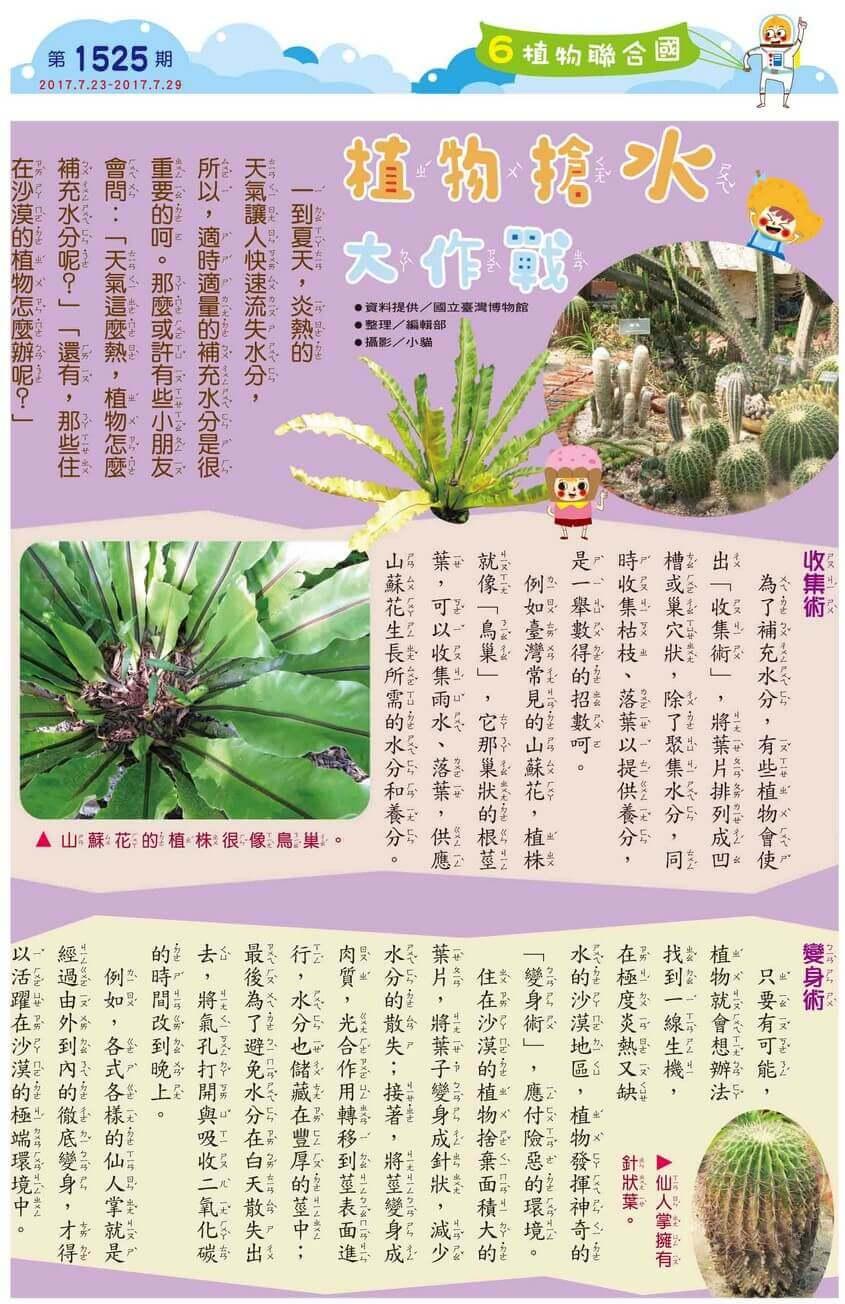 6 植物聯合國 植物搶水大作戰