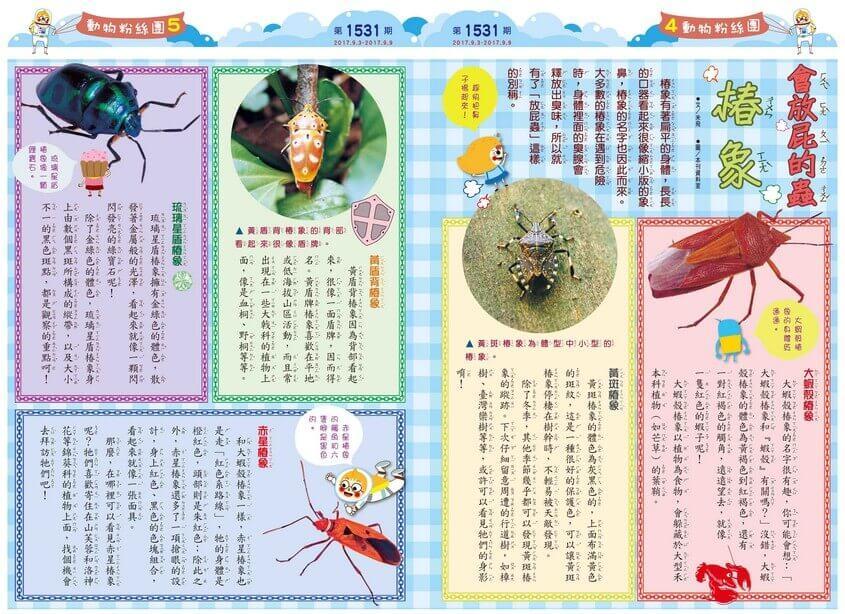 04-05 動物粉絲團 會放屁的蟲 椿象