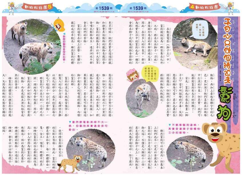 04-05 動物粉絲團 不甘心只做個清道夫