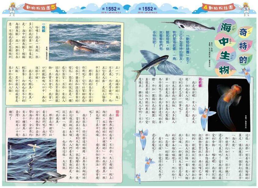 04-05 動物粉絲團 奇特的海中生物