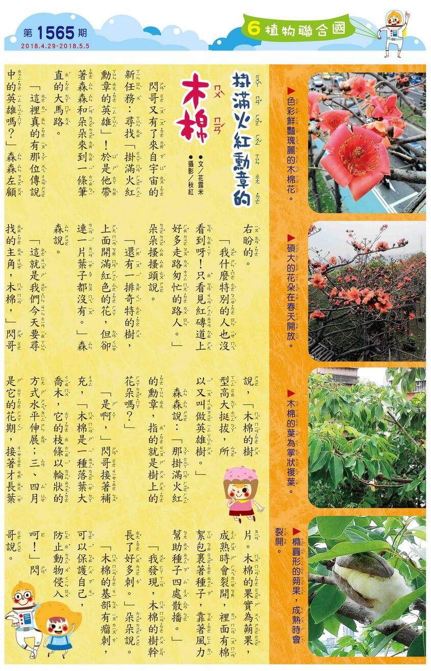 06 植物聯合國 掛滿火紅勳章的木棉