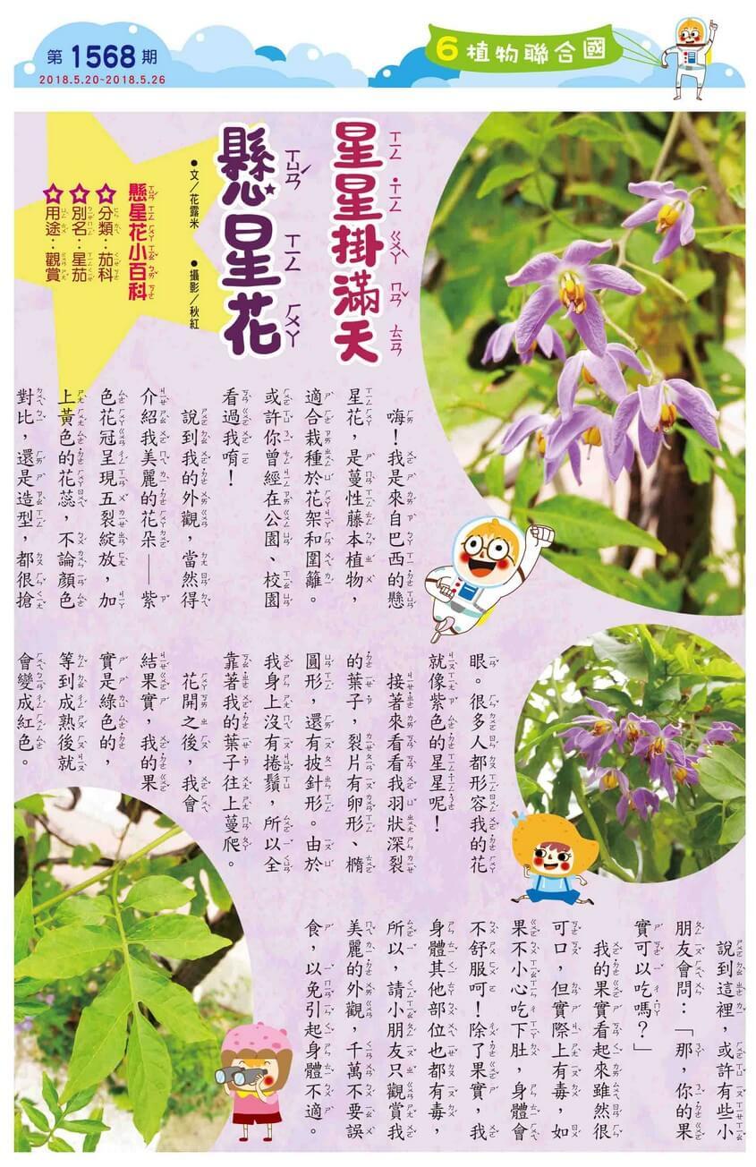 06 植物聯合國 星星掛滿天 懸星花