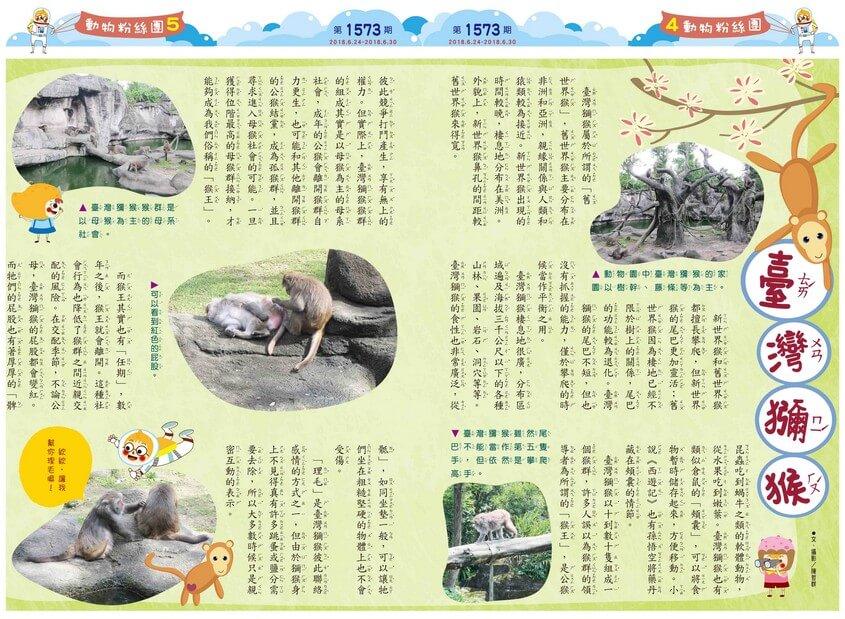 04-05 動物粉絲團 臺灣獼猴
