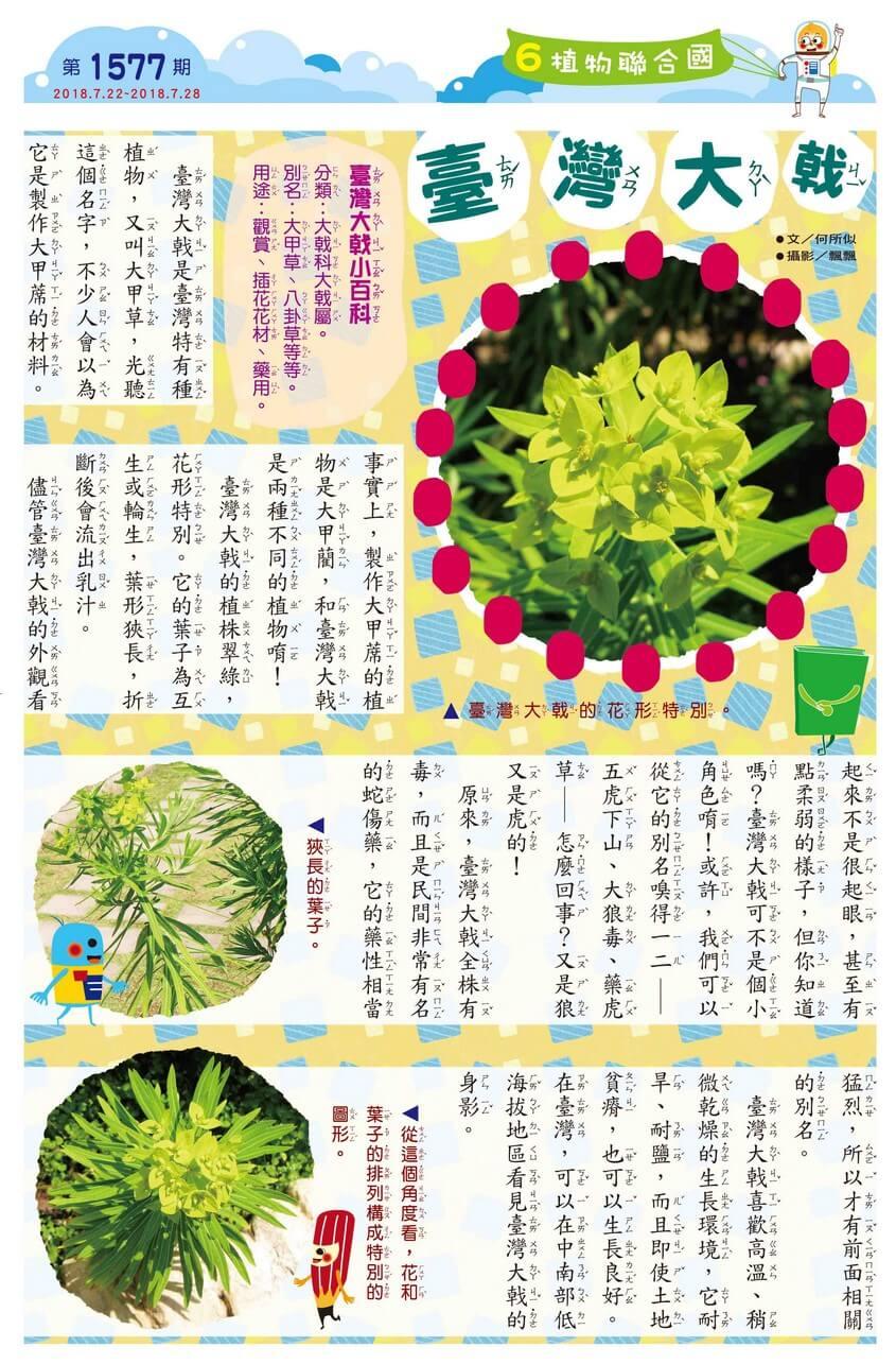 06 植物聯合國 臺灣大戟