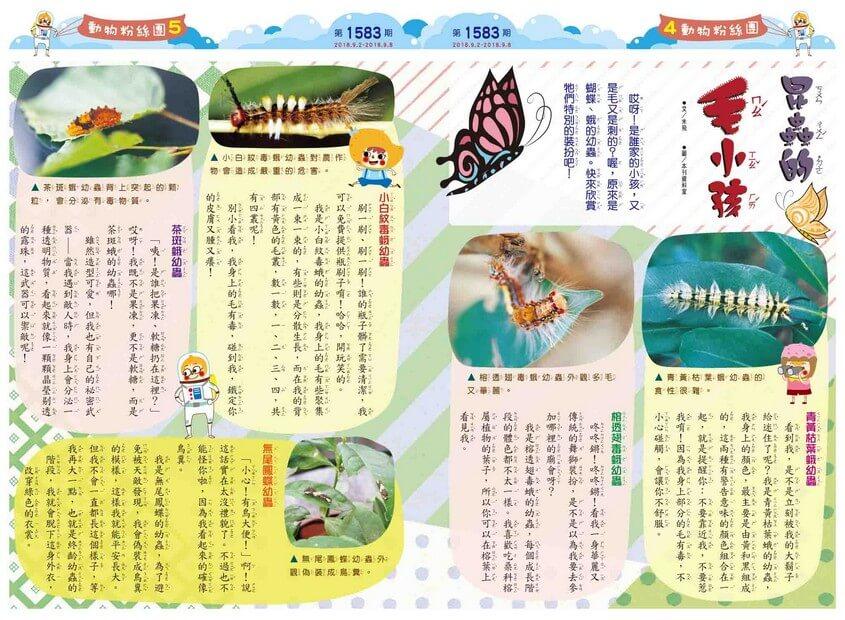 04-05 動物粉絲團 昆蟲的毛小孩