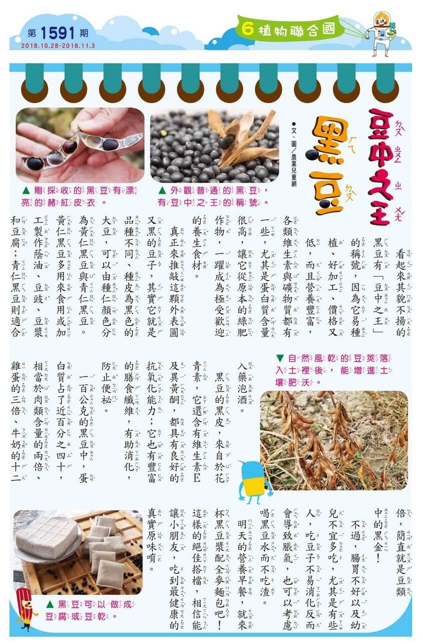06 植物聯合國 豆中之王 黑豆
