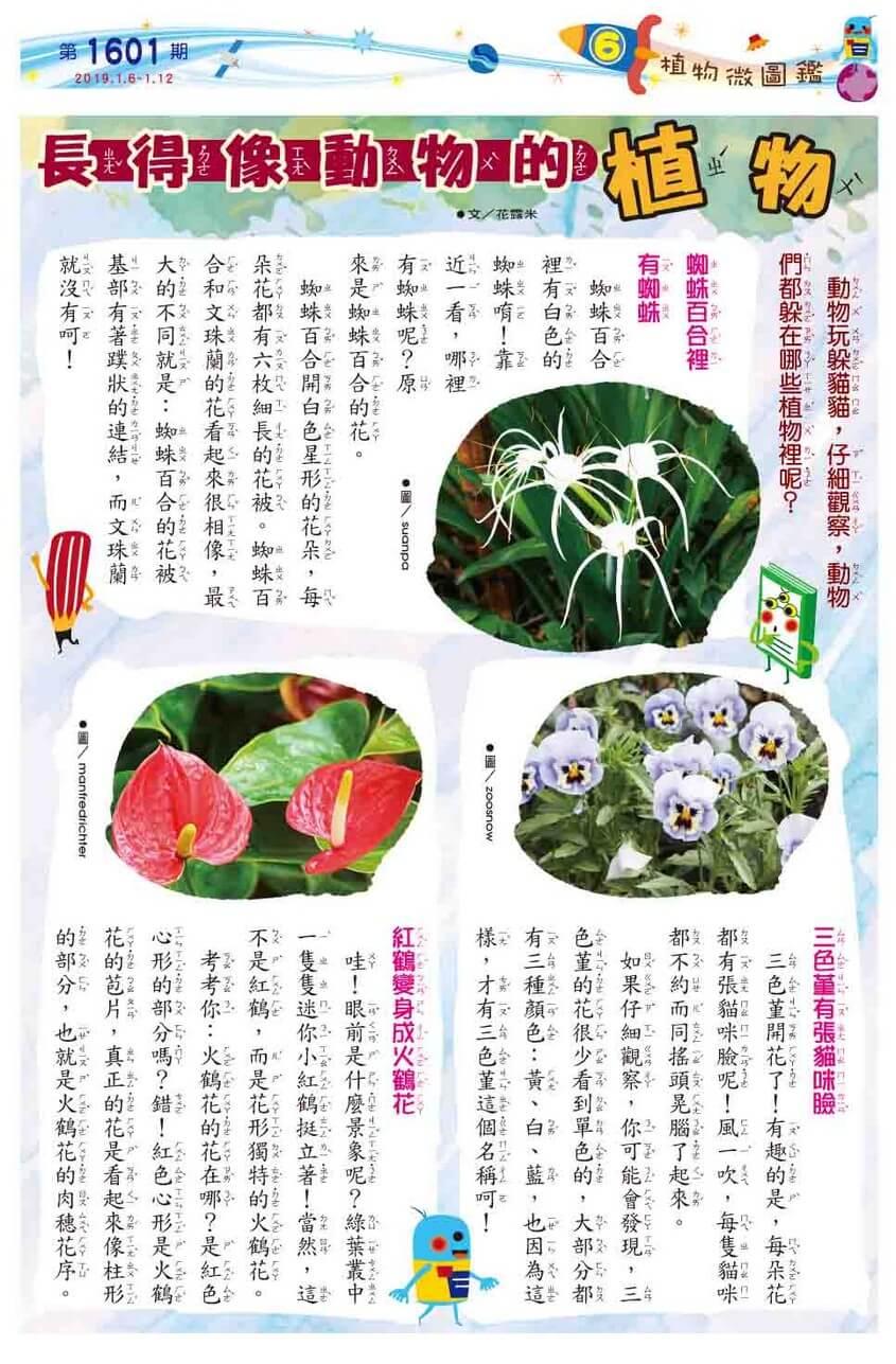 06 植物微圖鑑 長得像動物的植物