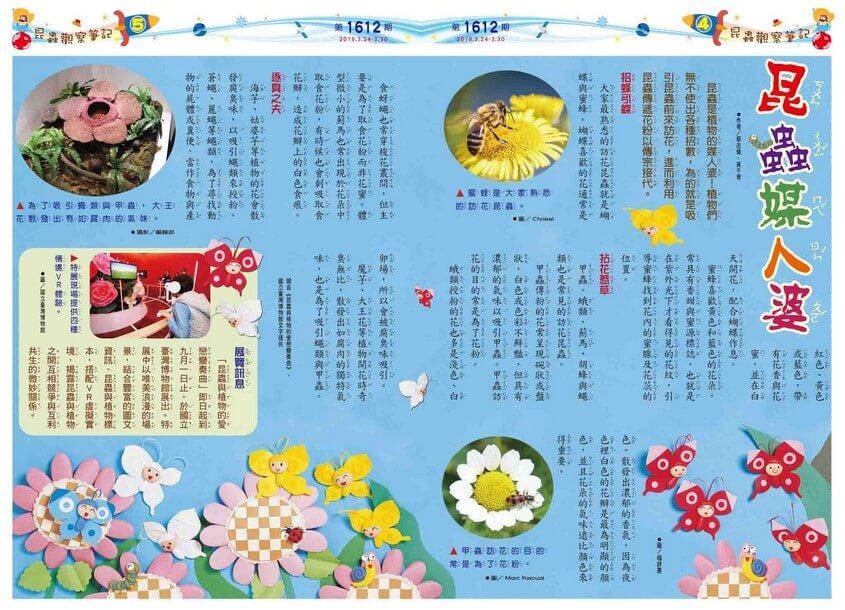 04-05 昆蟲觀察筆記 昆蟲媒人婆