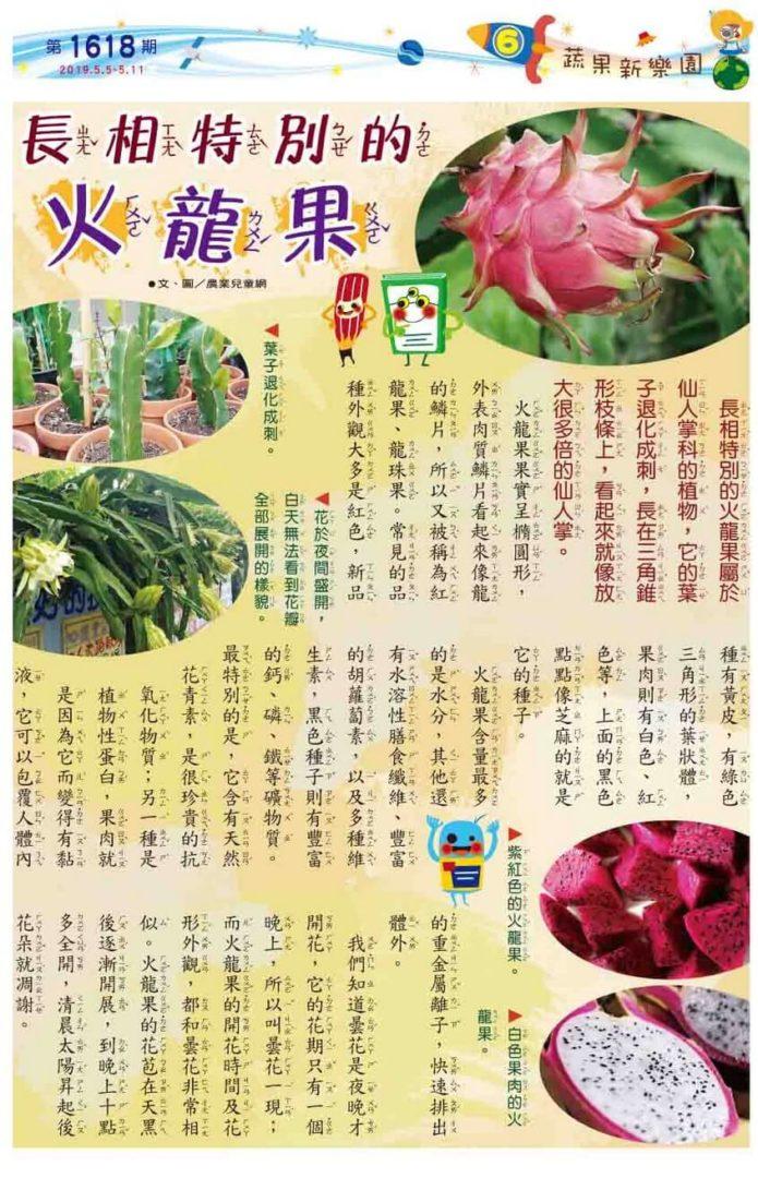06 蔬果新樂園 長相特別的火龍果