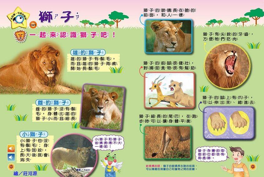 我認識‧可愛的動物-獅子