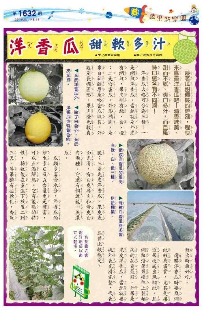 06 蔬果新樂園 洋香瓜甜軟多汁