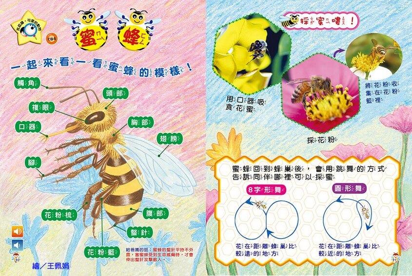 我認識‧可愛的動物-蜜蜂