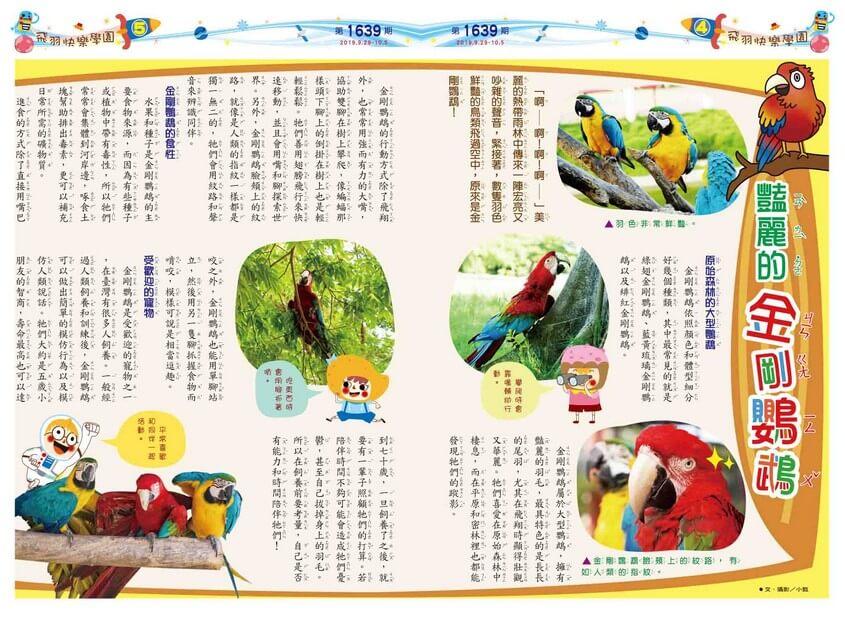 04-05 飛羽快樂學園 豔麗的金剛鸚鵡