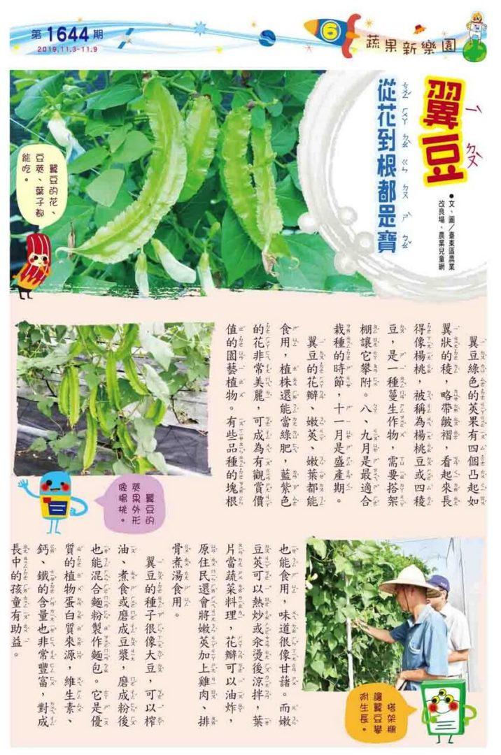 06 植物微圖鑑  翼豆 從花到根都是寶