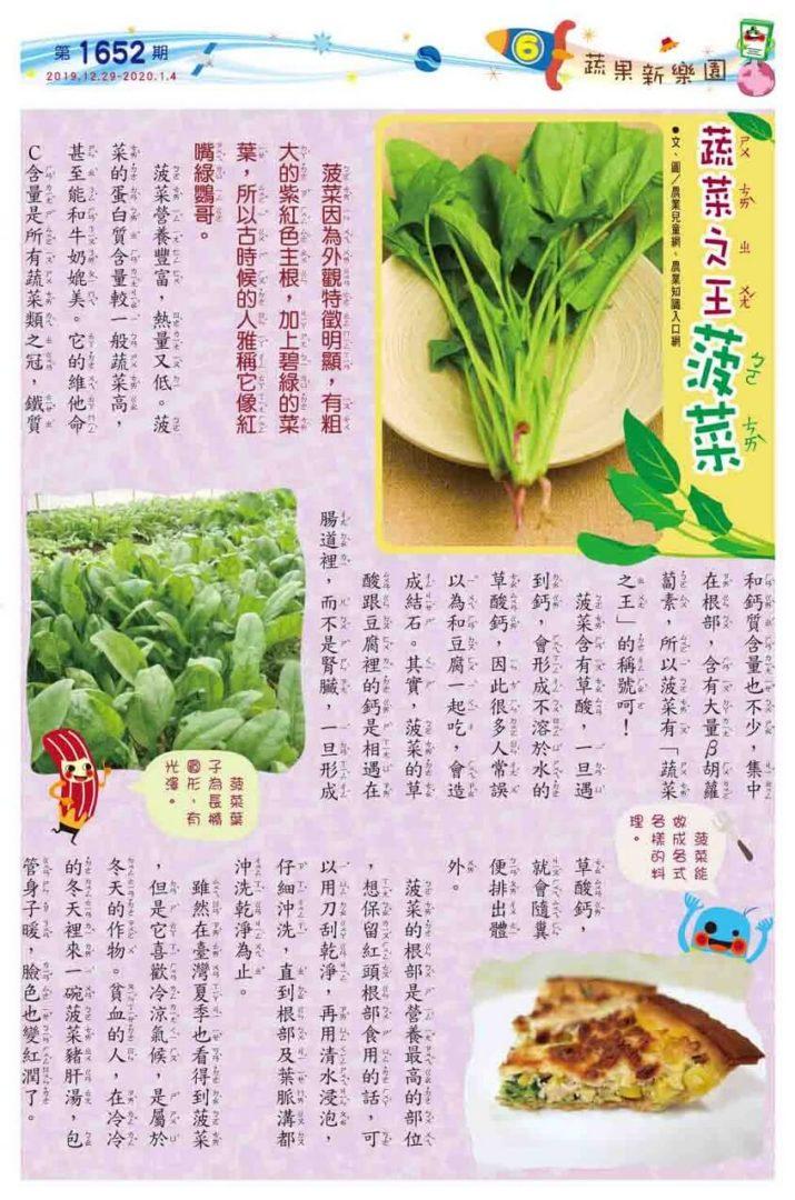 06 植物微圖鑑  蔬菜之王 菠菜